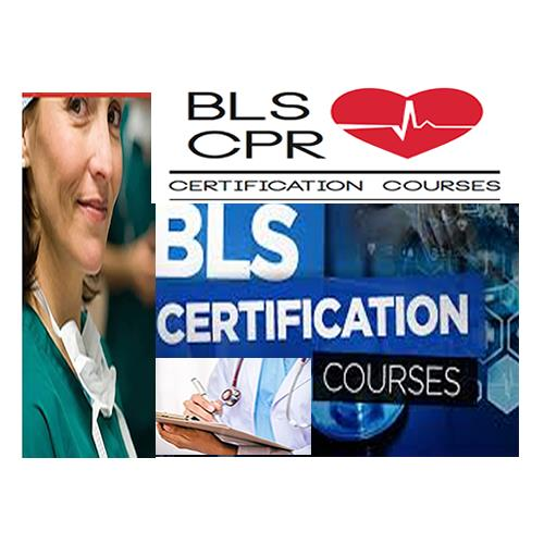 cpr bls courses instructor